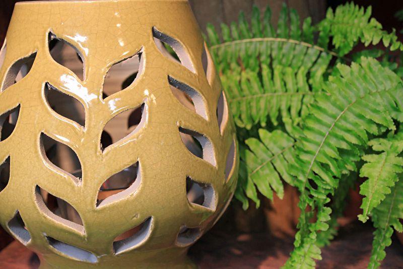 GardenShopLandscapeMorro